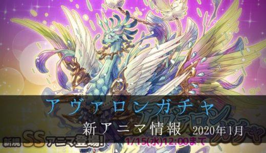 アヴァロンガチャ 2020.1 新アニマ情報【ななれん攻略】